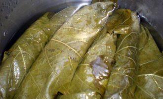 Долма с бараниной под сметанно-чесночным соусом и маринование виноградных листьев