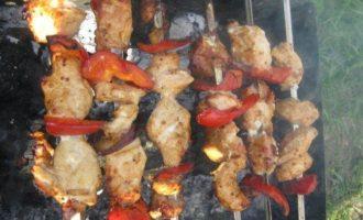 Шашлык из цыпленка в горчичном маринаде с болгарским перцем