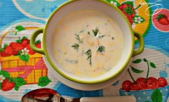 Болгарский летний суп