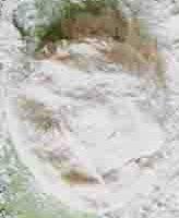 Китайский блинчик с начинкой
